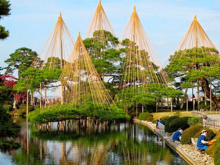 yukitsuri-japon-cuerdas-arboles