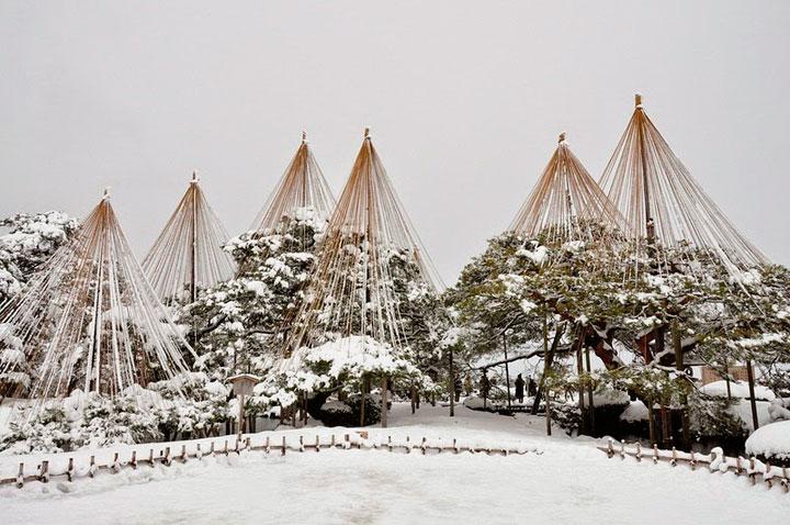 yukitsuri-tecnica-japonesa-nieve-arboles